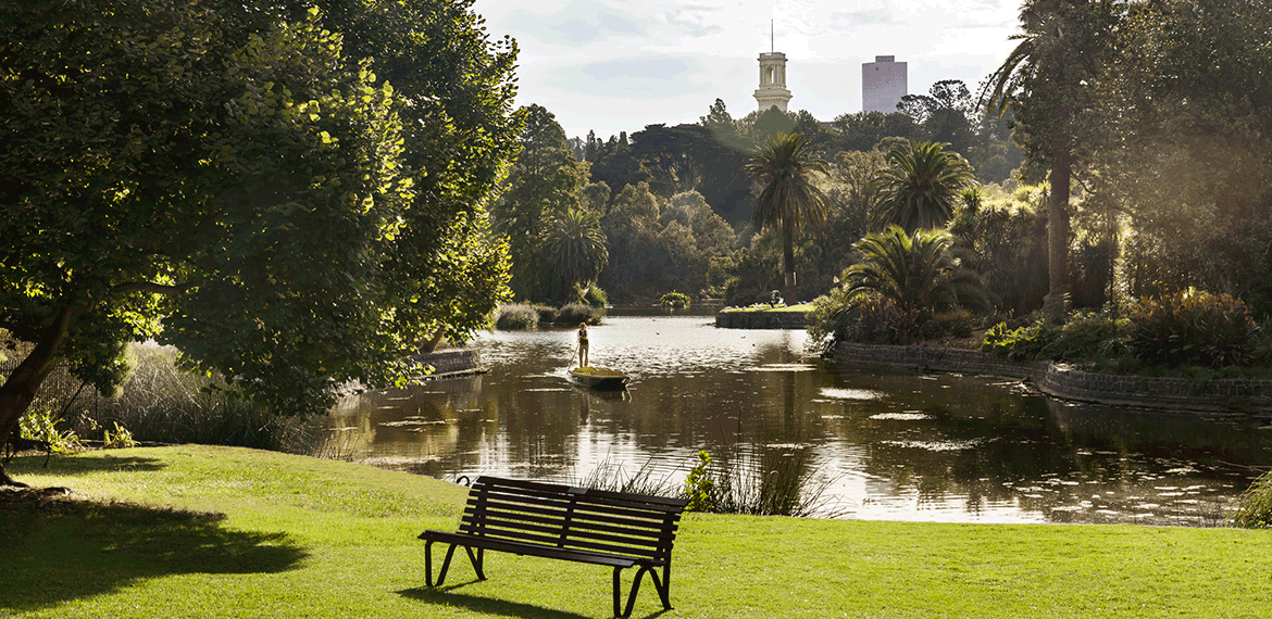 Botanical Gardens Melbourne park lake and bench
